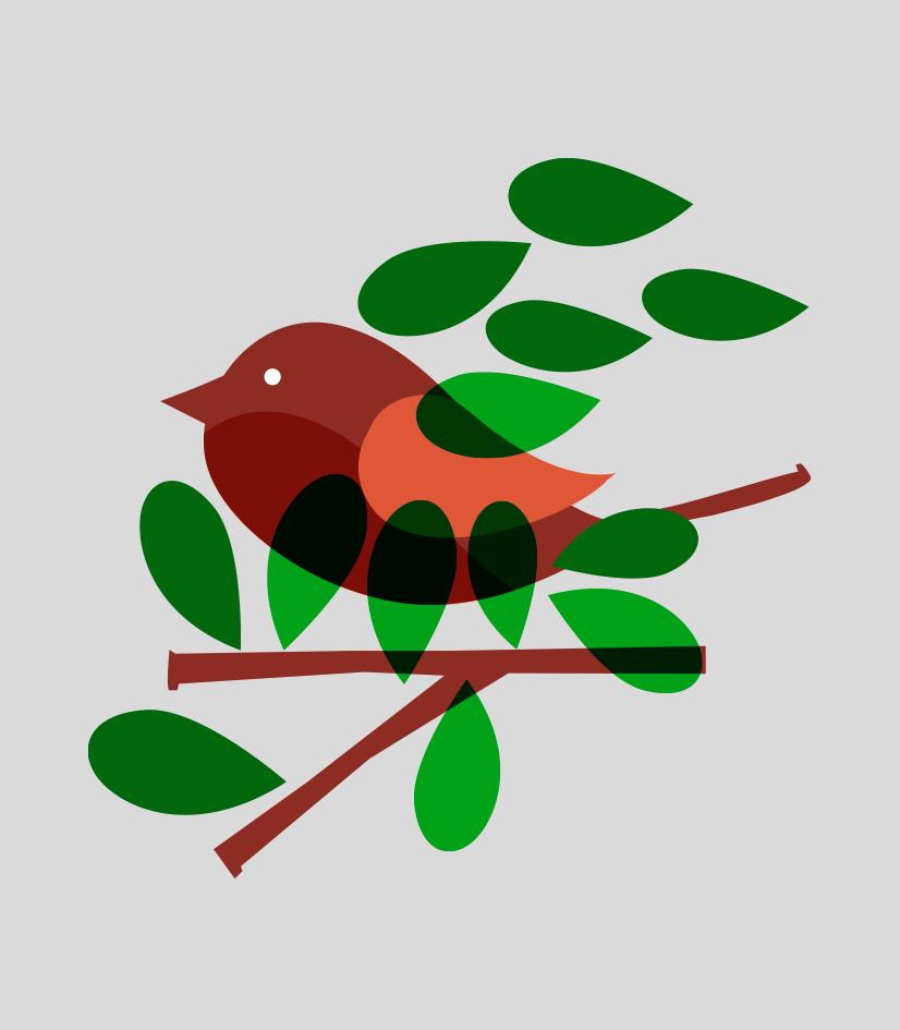 bird_simpl